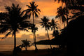 Tropical Beach With Palm Trees At Sunrise, Ang Thong National Ma Stock Photos - 37622463