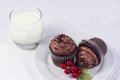 Two Chocolate Cupcakes Royalty Free Stock Photography - 37642117