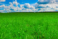 Green Beautiful Lawn And Nice Sunny Weather Royalty Free Stock Photos - 37675098