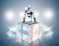 Finland - Canada Game. Face-off Player On The Ice Stock Photo - 37686250
