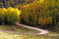 Curved Road Stock Photography - 37686562