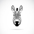 Vector Image Of An Zebra Head Royalty Free Stock Photo - 37693925