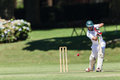 Cricket Game Players Action Stock Photo - 37714630