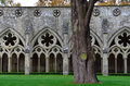 Cloisters, Salisbury Cathedral, Salisbury, Wiltshire, England Royalty Free Stock Images - 37748099
