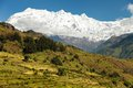 Rice Field And Snowy Himalayas Mountain In Nepal Stock Photos - 37759723