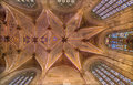 Bratislava - Ceiling Of Presbytery In  St. Martin Cathedral From 15. Cent. Stock Photography - 37774692