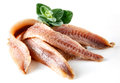 Anchovies With Oregano Stock Images - 37775024