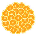 Circle From Oranges Royalty Free Stock Photos - 3785198