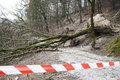 Safety Ribbon On Damaged Forest Road Royalty Free Stock Images - 37813149