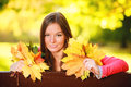 Fall Season. Portrait Girl Woman Holding Autumnal Leaves In Park Royalty Free Stock Image - 37833056