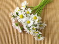 Bouquet Of Daisies Stock Images - 37843924