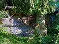 Abandoned Small Old Wooden Hut In The Forest Royalty Free Stock Images - 37879509