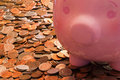 Piggy Bank With Coins Royalty Free Stock Photos - 37886598