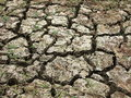 Parched Land Close-up Stock Photography - 37892652