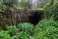 Entrance Of One Of Two Kaumana Caves In Big Island Stock Photos - 37977973