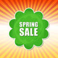 Spring Sale In Flower Label Over Rays Stock Photos - 37993373