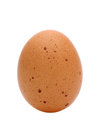 Brown Egg Royalty Free Stock Images - 38036239
