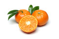 Tangerine Stock Photo - 38049120
