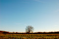 Fall Time, Fields, Rural Landscape Stock Photo - 38145880