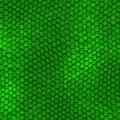 Green Dragon Scales Pattern Royalty Free Stock Photography - 38203247