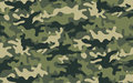 Camouflage Royalty Free Stock Images - 38205819