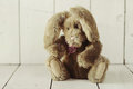 Teddy Bear Like Home Made Bunny Rabbit On Wooden White Backgroun Stock Images - 38249714