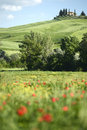 Toscana House Style On Meadow In Tuscany Stock Images - 38270754