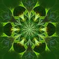 Beautiful Fractal Flower In Green And Yellow. Computer Generated Royalty Free Stock Image - 38312146