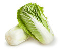 Chinese Cabbage Stock Photos - 38313853