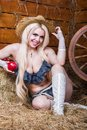 Young Sexy Girl In Underwear  Sit In The Barn With Hay Stock Images - 38362694