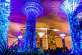 Garden By The Bay Royalty Free Stock Photography - 38368917