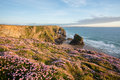 Bedruthan Steps Royalty Free Stock Image - 38372396