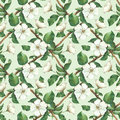 Seamless Pattern With Watercolor Apple Flowers Royalty Free Stock Image - 38373186