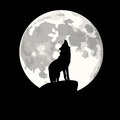 Square Illustration Of Wolf Howling At Moon. Stock Images - 38374944