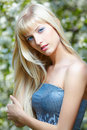 Beautiful Blonde Royalty Free Stock Images - 38394439