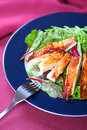 Chicken Salad Royalty Free Stock Images - 3843239