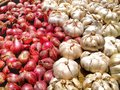 Red Onions And White Garlic Royalty Free Stock Photography - 38416837