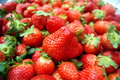 Strawberry Royalty Free Stock Photography - 38449257