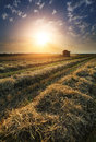 Sunset Over Wheat Field Royalty Free Stock Photo - 38485845