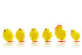 Easter Chicks In A Line Stock Images - 38564504