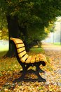 Bench In The Autumn Stock Images - 38575054