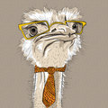 Vector Funny Ostrich Bird Hipster Stock Photography - 38632652