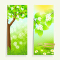 Two Vertical Banners Stock Photos - 38745903