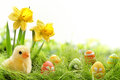 Easter Stock Images - 38767514