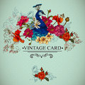 Floral Vintage Card With Peacock Stock Images - 38780824