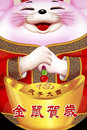 Chinese New Year  Royalty Free Stock Photography - 3888537