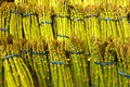 Green Asparagus Royalty Free Stock Images - 38816179