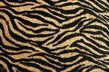 Gold And Black Tiger Design With Rich Texture Royalty Free Stock Image - 38824646