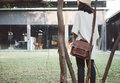 Fashion Woman With Vintage Leather Bag Stock Photography - 38877982