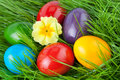 Easter Eggs In Grass Royalty Free Stock Images - 38887799
